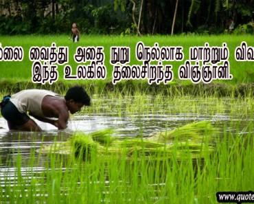 the farmer is in paddy field