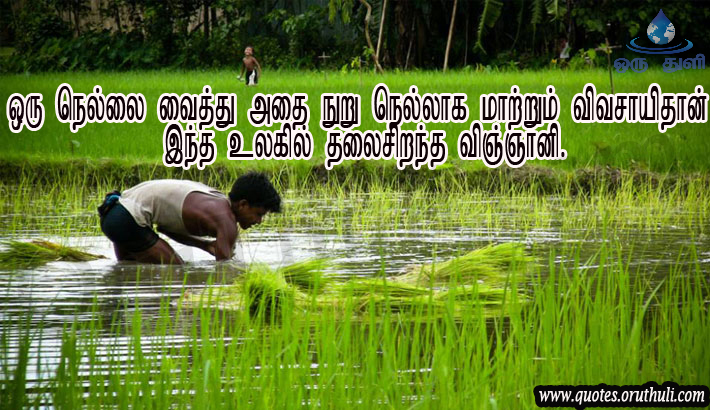 Farmer Quotes Custom Best Scientist Is Farmer Reality OruThuli Quotes
